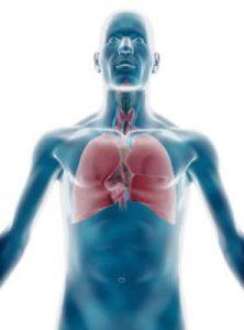физические нагрузки при бронхиальной астме