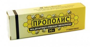 propolis-1