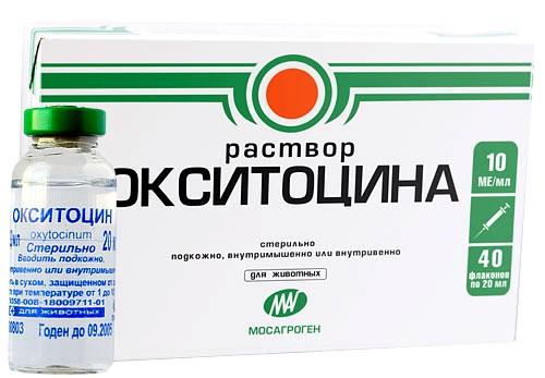 Окситоцин: инструкция по применению гормонального препарата