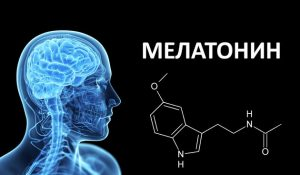 melatonin-i-dolgoletie-1-1