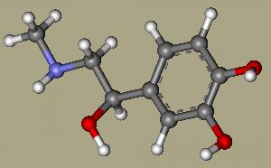 Адреналин: как снизить и повысить уровень гормона