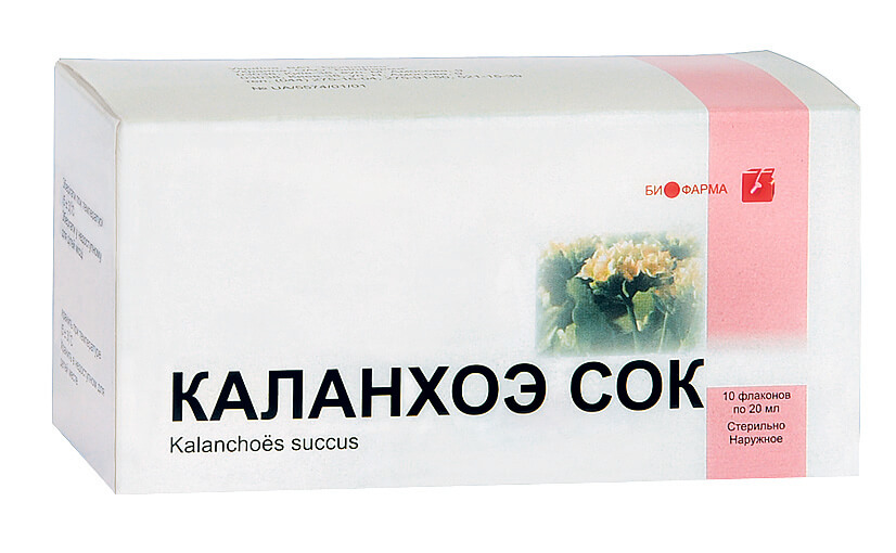 Сок каланхоэ: инструкция по применению