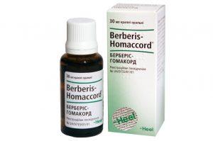 берберис гомаккорд