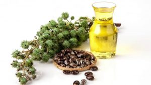 Касторовое масло для ногтей